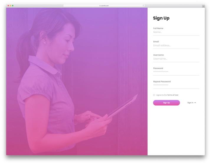 login-form-v13