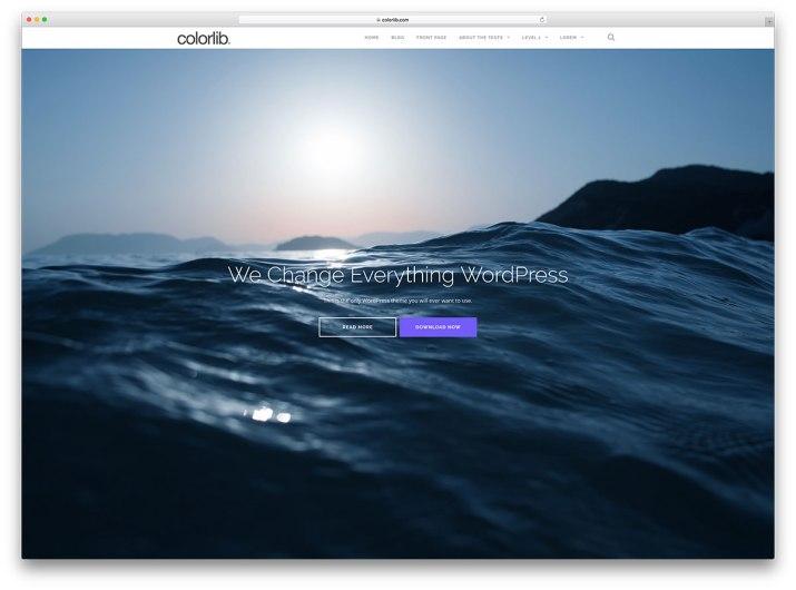 shapely-freee-fullscreen-multipurpose-wordpress-theme.jpg